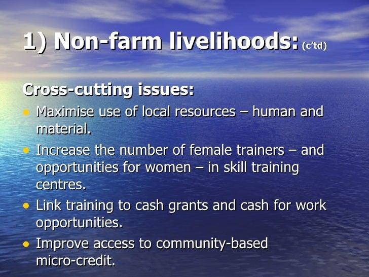 1) Non-farm livelihoods:  (c'td) <ul><li>Cross-cutting issues: </li></ul><ul><li>Maximise use of local resources – human a...