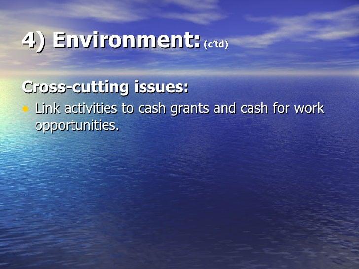 4) Environment:  (c'td) <ul><li>Cross-cutting issues: </li></ul><ul><li>Link activities to cash grants and cash for work o...