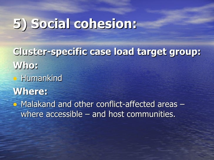 5) Social cohesion: <ul><li>Cluster-specific case load target group: </li></ul><ul><li>Who: </li></ul><ul><li>Humankind </...