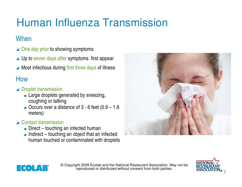 H1N1: What You Need to Know About the Influenza Pandemic