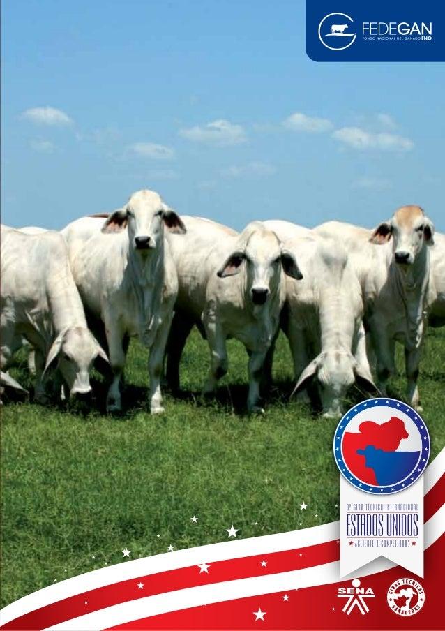 1GIRA TÉCNICA INTERNACIONAL ESTADOS UNIDOS ÍNDICE Prólogo Historia del Cowboy Nolan Ryan Graham Land & Cattle Co. Heartbra...