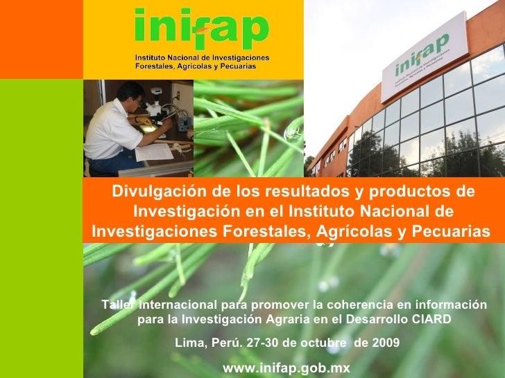 Taller Internacional para promover la coherencia en información para la Investigación Agraria en el Desarrollo CIARD Divul...