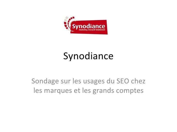 Synodiance Sondage sur les usages du SEO chez les marques et les grands comptes