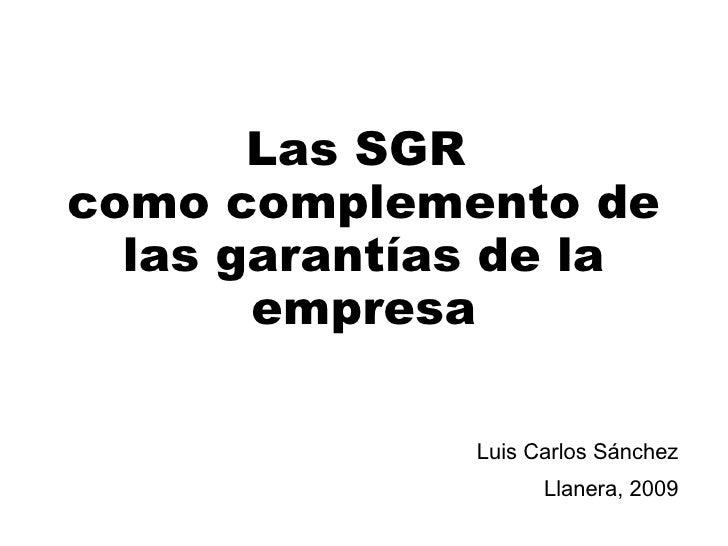 Las SGR  como complemento de las garantías de la empresa Luis Carlos Sánchez Llanera, 2009