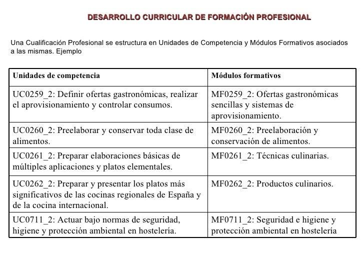 El desarrollo curricular de la formacion profesional for Formacion profesional cocina
