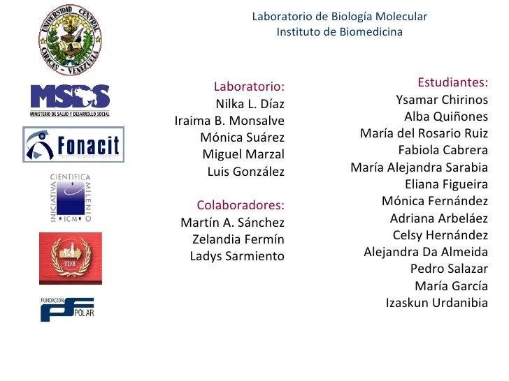 Laboratorio de Biología Molecular Instituto de Biomedicina Estudiantes: Ysamar Chirinos Alba Quiñones María del Rosario Ru...