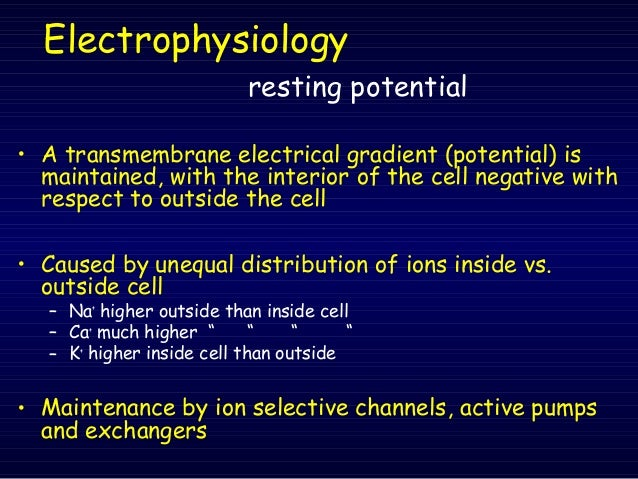 Electrical Vs Chemical Gradient