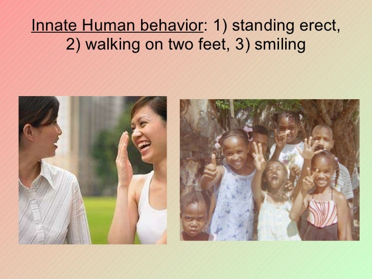 is human behavior innate Racism is innate: the human brain makes unconscious how to use this knowledge from brain and behavior to further extend basic knowledge and to drive applications.