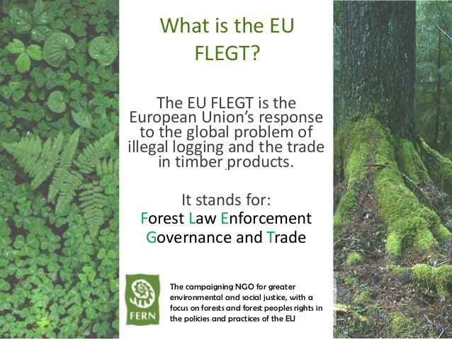 What is the EU FLEGT? The EU FLEGT is the European Union's response to the global problem of illegal logging and the trade...