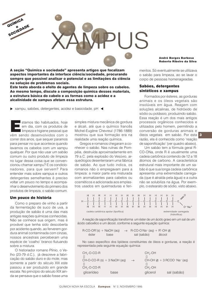 2010.07.29 quimica8 xampus
