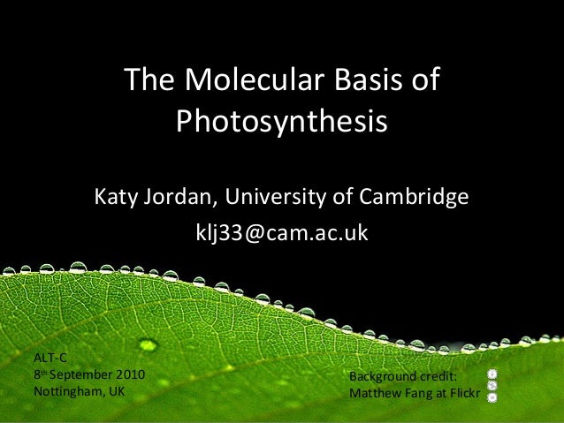 The Molecular Basis of                 Photosynthesis         Katy Jordan, University of Cambridge                   klj33...
