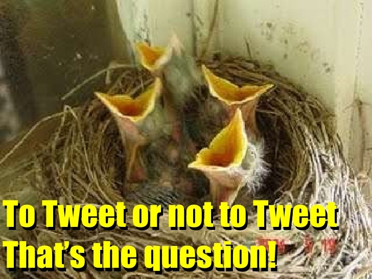To Tweet or not to Tweet That's the question! To Tweet or not to Tweet That's the question!