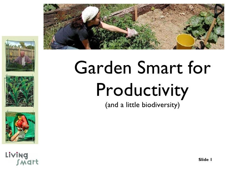 Garden Smart for Productivity (and a little biodiversity)