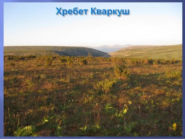 ☼ Одна из рек, берущих начало из верховых болот хребта Кваркуш. ☼ длина реки примерно 8 км ☼ устье Жигалана ниже истока на...