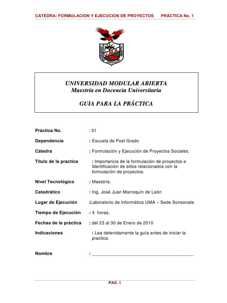 2010   Guia Practica No  1 Investigacion Proyectos