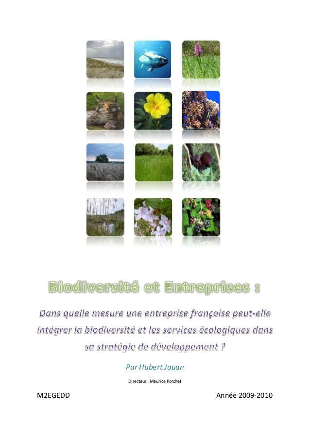 Par Hubert Jouan Directeur : Maurice Porchet M2EGEDD Année 2009-2010