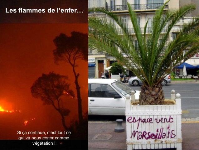 Malheureusement, comme partout ailleurs, à Marseille nous avons aussi nos malades ! Ils profitent des gentillesses de Môss...