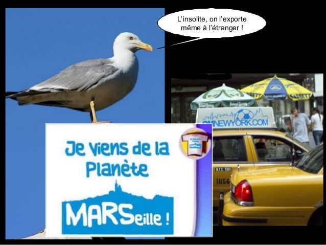 Tout ça pour vous dire, que Marseille c'est la plus belle ville du monde ! Vous voulez que je vous en raconte une bonne su...