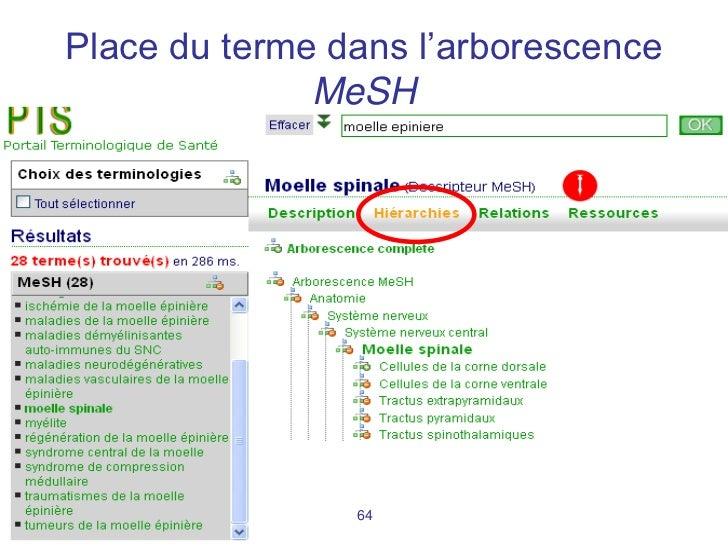 Place du terme dans l'arborescence                MeSHMaster RIM        64