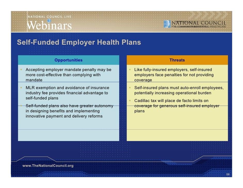 20100922 nccbh avalere employer webinar final