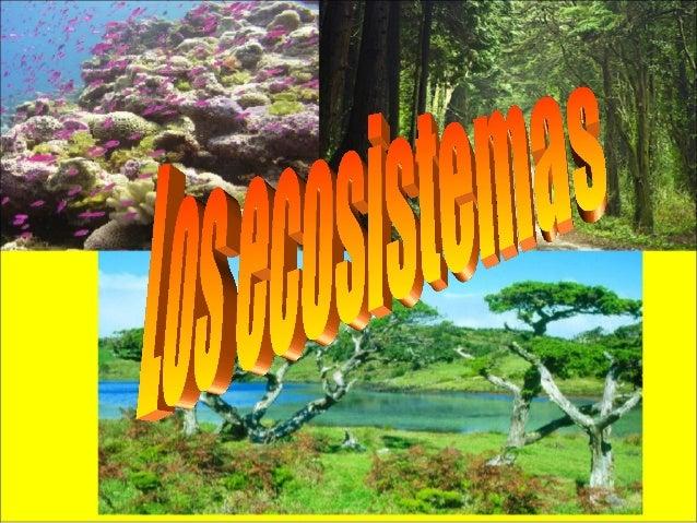 Lo que necesita un ecosistema • Un ecosistema tiene que estar formado, por un biotopo, partes no vivas del ecosistema. La ...