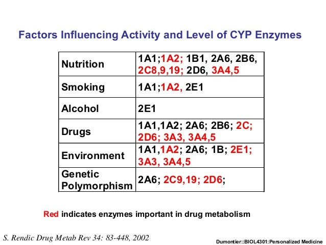 Dumontier::BIOL4301:Personalized Medicine S. Rendic Drug Metab Rev 34: 83-448, 2002 Red indicates enzymes important in dru...