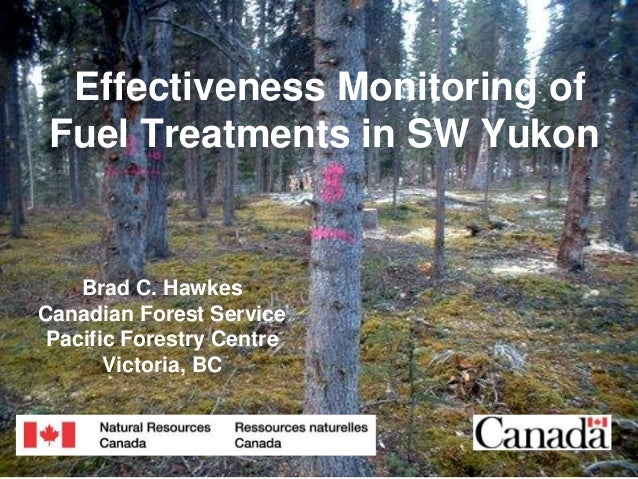 Effectiveness Monitoring of Fuel Treatments in SW Yukon  Brad C. Hawkes Canadian Forest Service Pacific Forestry Centre Vi...