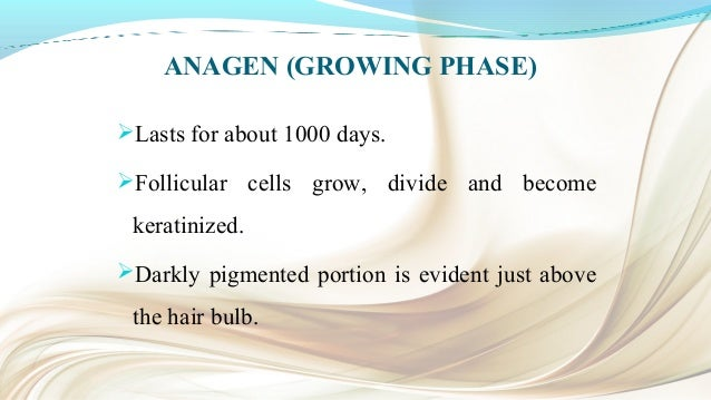 CATAGEN (INVOLUTING PHASE) Lasts for about 10 days. Gradual thinning and decrease of the pigment. Melanocytes stop prod...