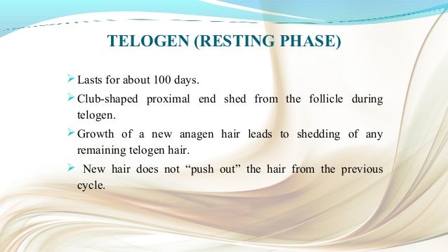 EXOGEN (HAIR SHEDDING PHASE) Recently added phase. Describes relationship between hair shaft and base of telogen follicl...