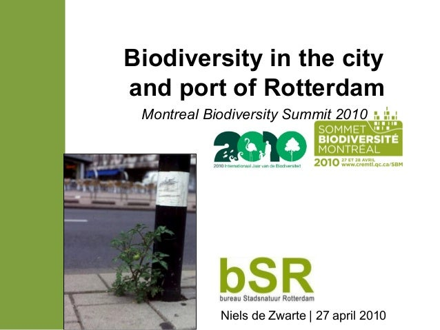Biodiversity in the city and port of Rotterdam Montreal Biodiversity Summit 2010 Niels de Zwarte | 27 april 2010