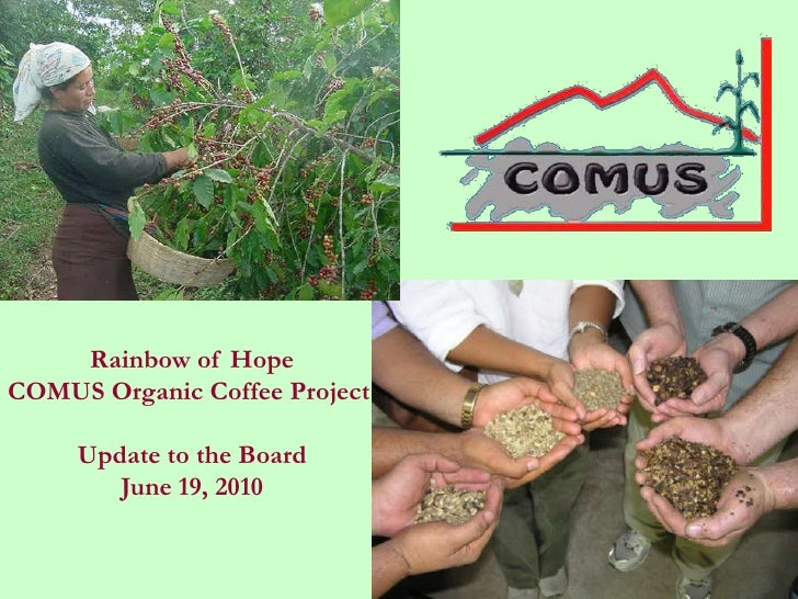 Rainbow of HopeCOMUS Organic Coffee Project     Update to the Board        June 19, 2010
