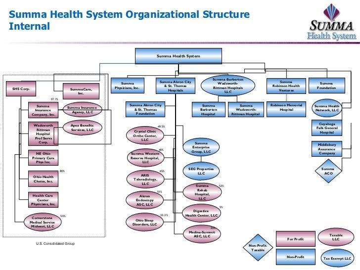 dyson organizational structure