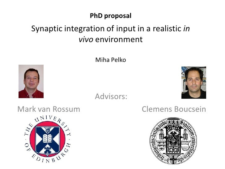 PhD proposal   Synaptic integration of input in a realistic in                vivo environment                     Miha Pe...