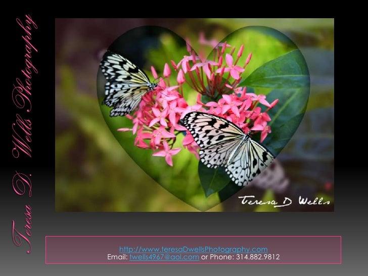 Teresa D. Wells Photography<br />http://www.teresaDwellsPhotography.com<br />Email: twells4967@aol.com or Phone: 314.882.9...