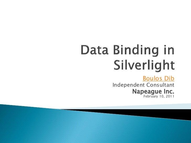 Boulos DibIndependent Consultant       Napeague Inc.           February 10, 2011