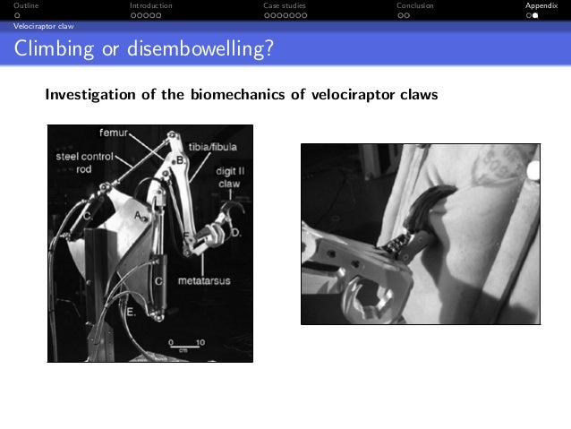 Outline              Introduction       Case studies       Conclusion   AppendixVelociraptor clawClimbing or disembowellin...