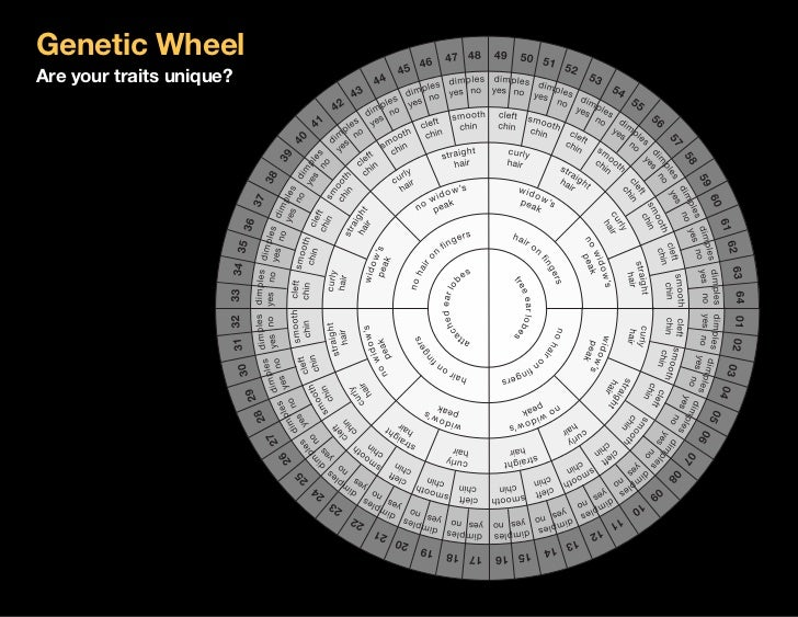 2011 0801 genetic wheel