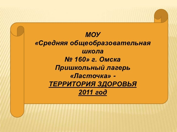 МОУ«Средняя общеобразовательная            школа       № 160» г. Омска     Пришкольный лагерь         «Ласточка» -   ТЕРРИ...