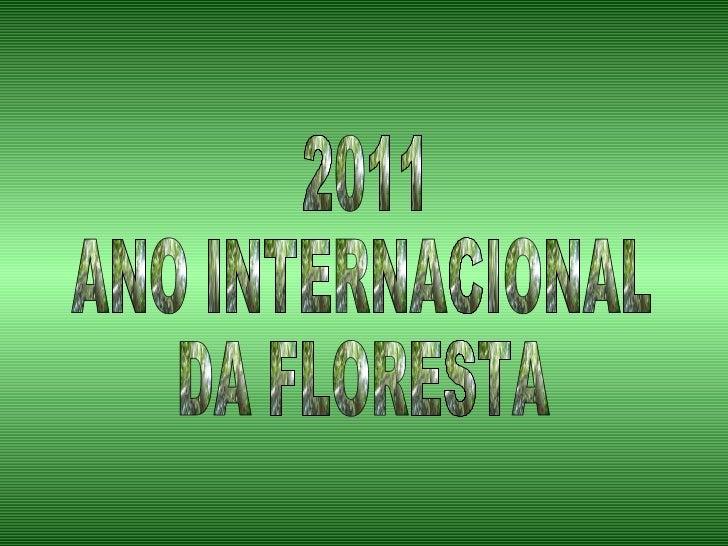 2011 ANO INTERNACIONAL DA FLORESTA