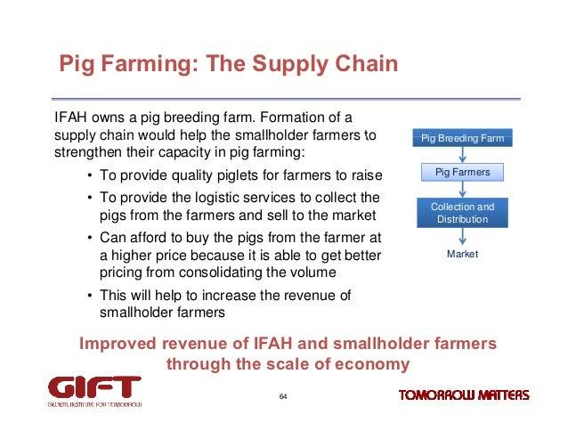A Sample Pig Farming Business Plan Template
