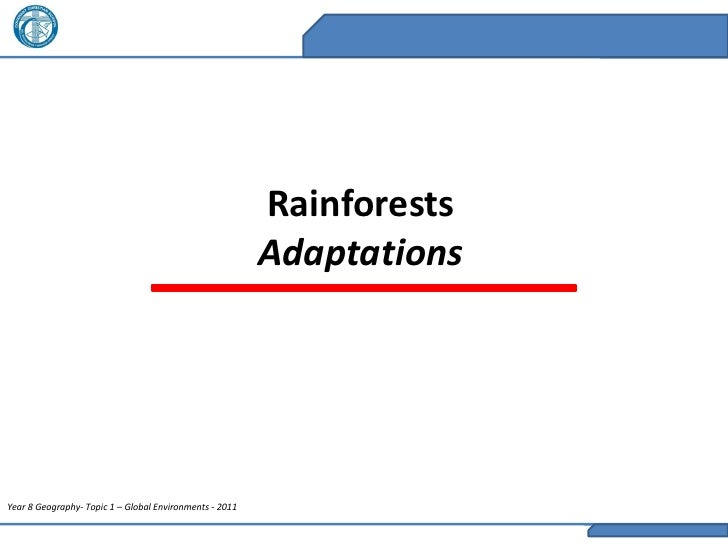 Rainforests                                                         AdaptationsYear 8 Geography- Topic 1 – Global Environm...