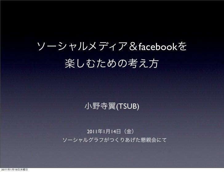 facebook                                (TSUB)                2011   1   142011   1   19