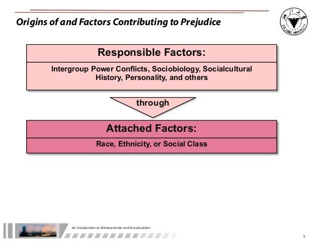 Ethnocentrism stereotyping and prejudice essay