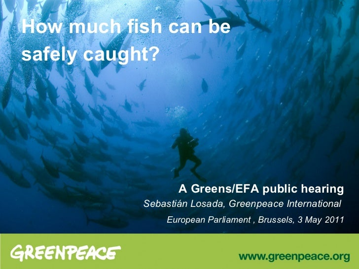 How much fish can besafely caught?                  A Greens/EFA public hearing           Sebastián Losada, Greenpeace Int...