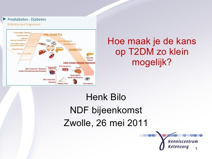 Hoe maak je de kans op T2DM zo klein mogelijk? Henk Bilo NDF bijeenkomst Zwolle, 26 mei 2011
