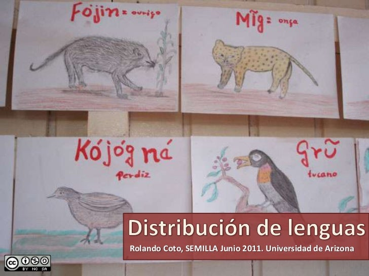 Distribución de lenguas<br />Rolando Coto, SEMILLA Junio 2011. Universidad de Arizona<br />