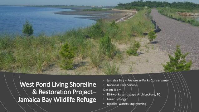 West Pond Living Shoreline & Restoration Project– Jamaica Bay Wildlife Refuge • Jamaica Bay – Rockaway Parks Conservancy •...