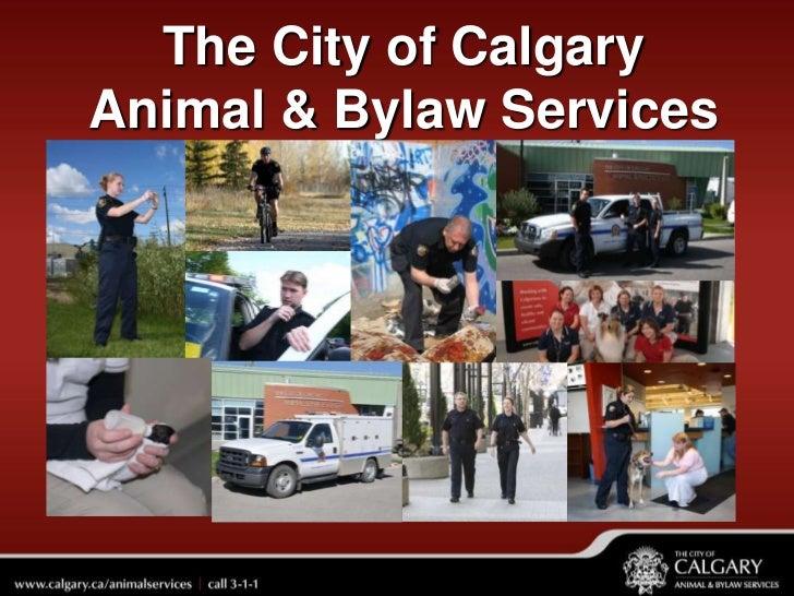 The City of CalgaryAnimal & Bylaw Services