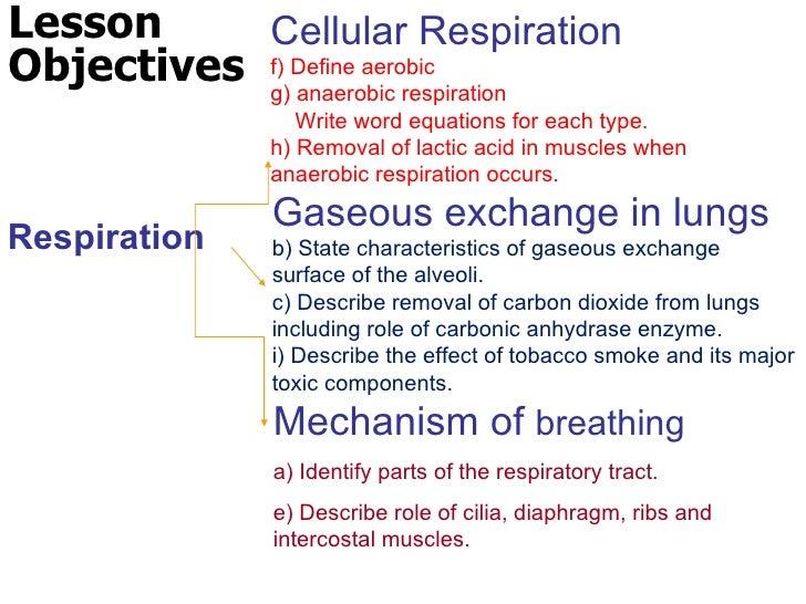 2011 cellular respiration