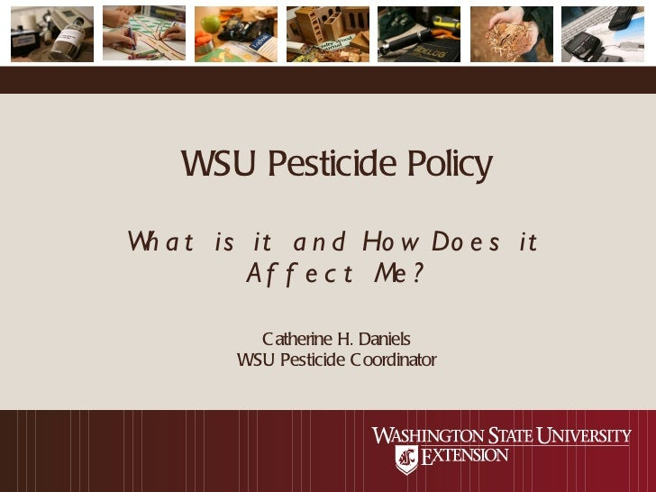 WSU Pesticide Policy What is it and How Does it Affect Me? Catherine H. Daniels WSU Pesticide Coordinator